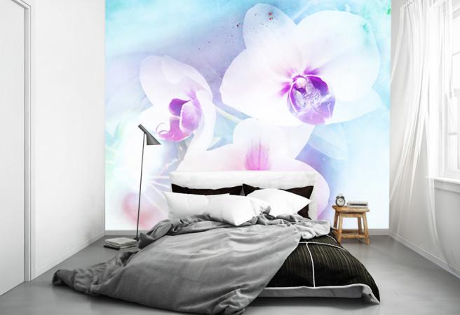 Фотообои три орхидеи