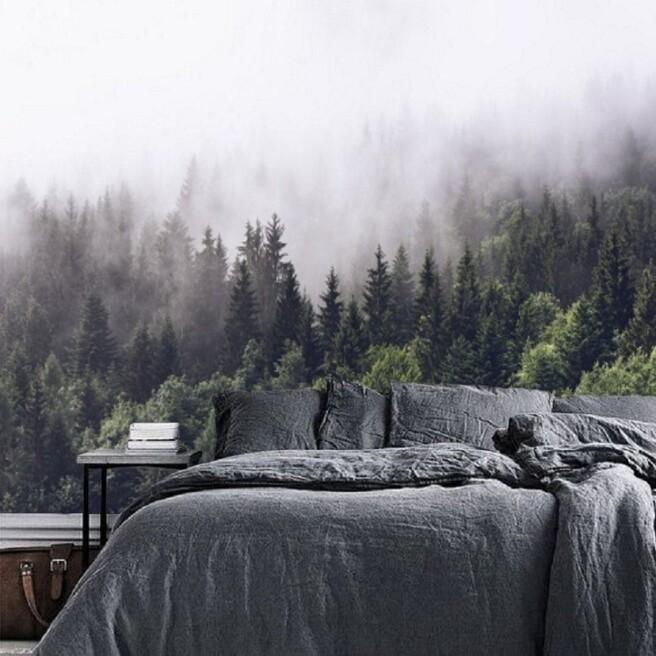 Фотообои туманно-спокойный лес