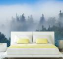 Лесной туман