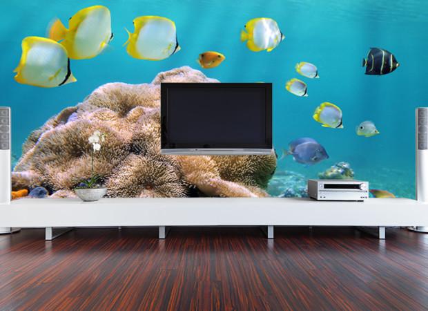 стенка с рыбками
