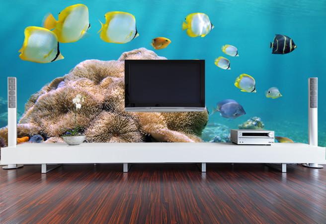 Фотообои стенка с рыбками