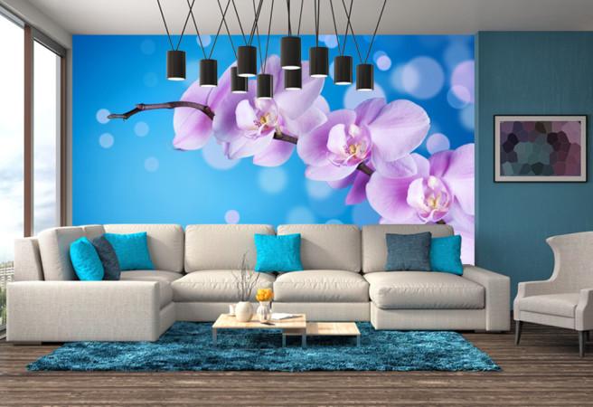 орхидеи на синем