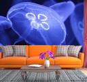 Фотообои синие медузы