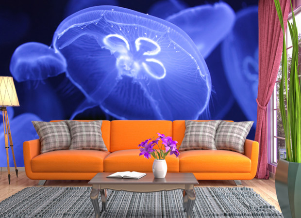 синие медузы