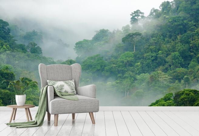 дымка над тропическим лесом