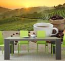 Фотообои кофейная плантация