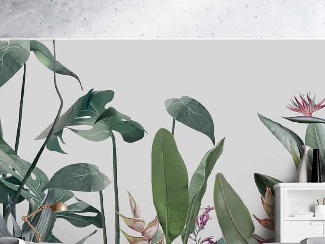 Фотообои Редкие листья пальм