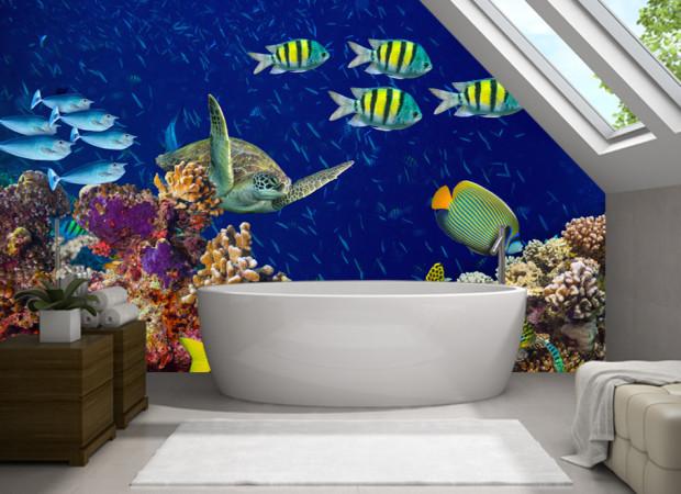 Кораллы и черепаха