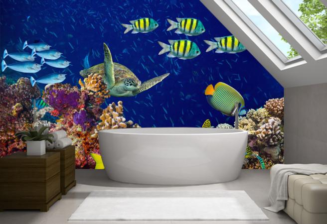 Фотообои Кораллы и черепаха