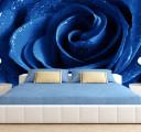 Фотообои роза в синем цвете