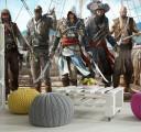 ассасин и пираты