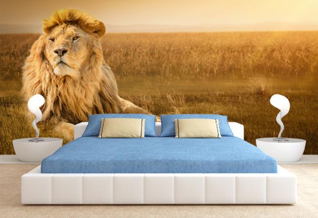 Фотообои гордый лев