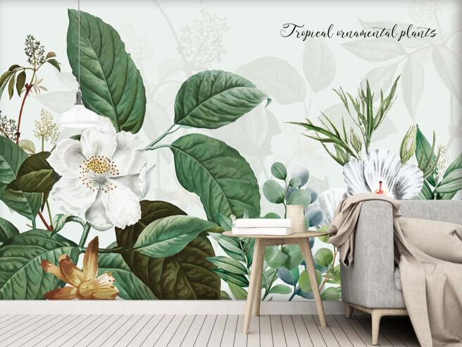 Тропические декоративные растения