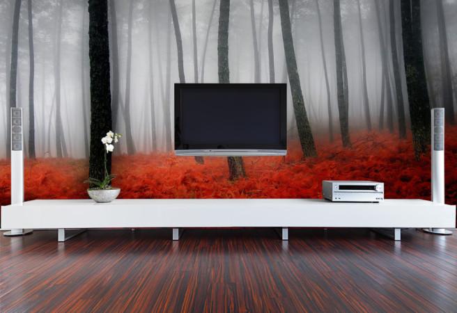 Фотообои красный лес