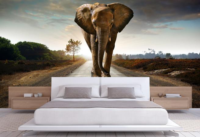 Фотообои слон в стене