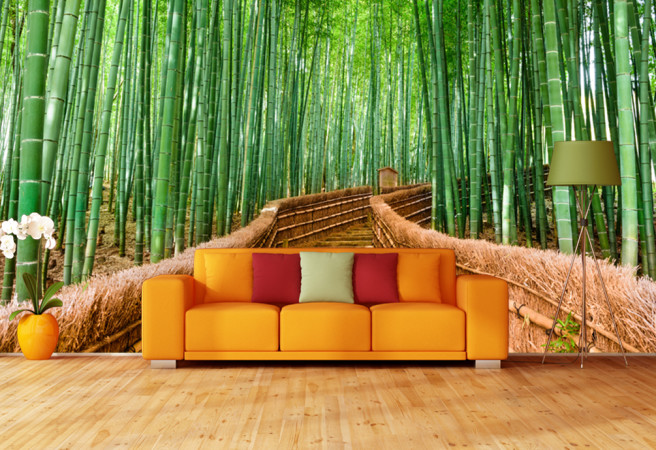 Фотообои мост в бамбуковом лесу