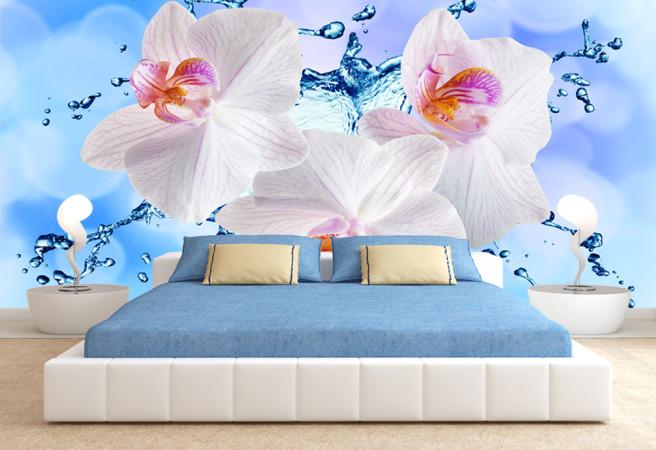 Фотообои орхидеи и вода