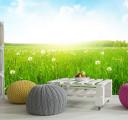 Фотообои Солнечная полянка
