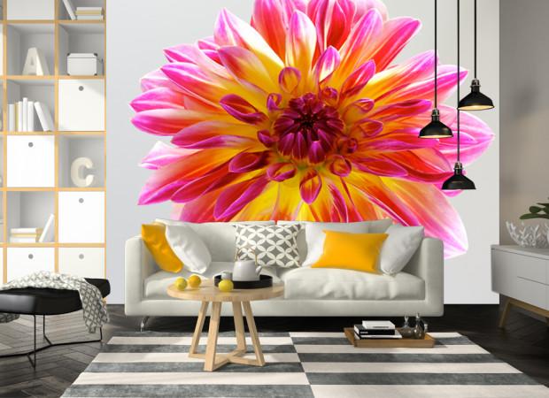Цветок на светлом фоне