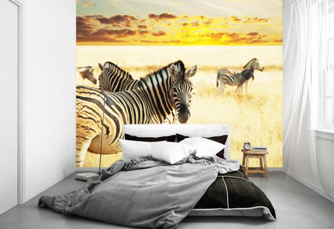 Фотообои Зебры в саванне