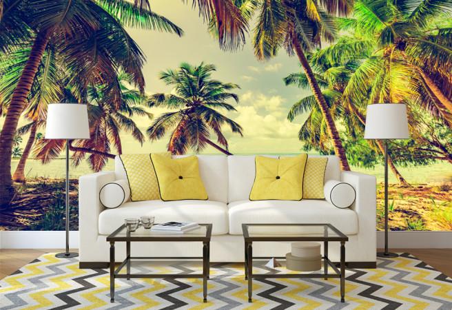 пальмы под солнцем