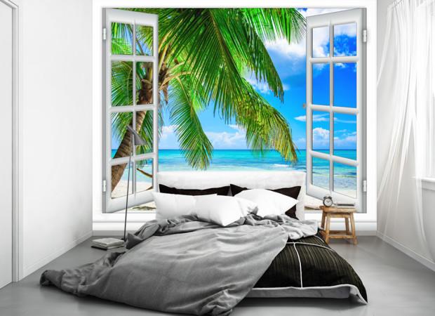 пальма в окне