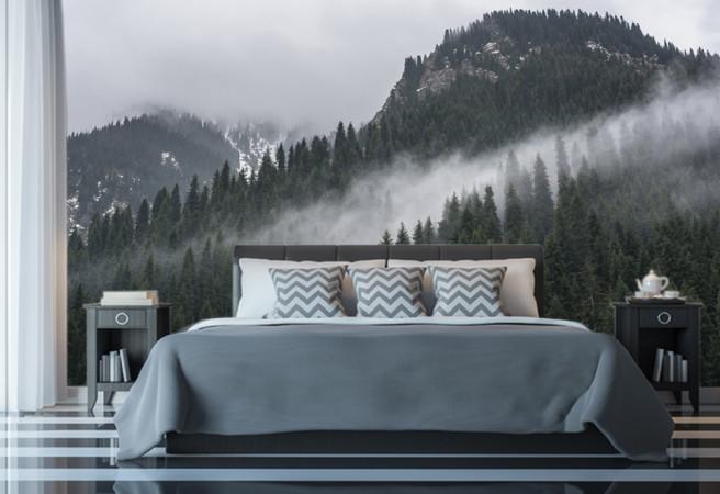 Фотообои туман в горном лесу