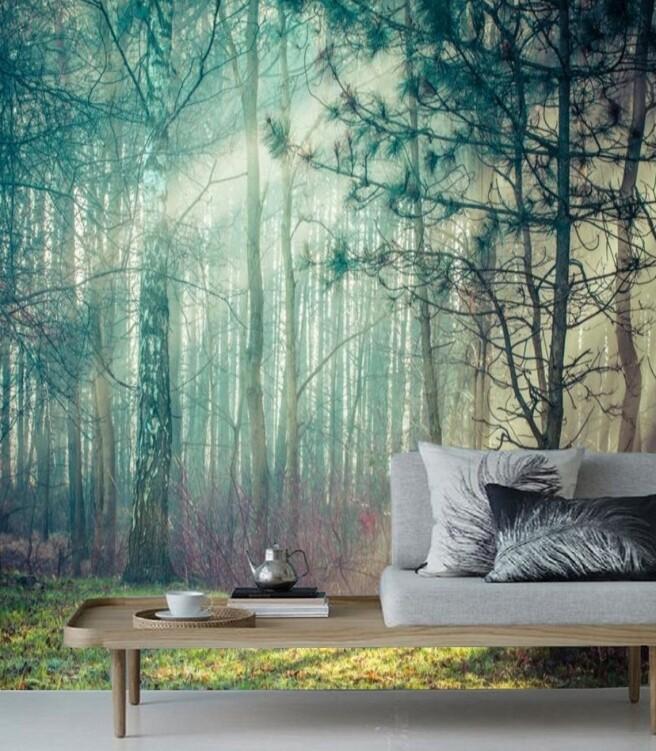 Фотообои лучик света в чаще леса