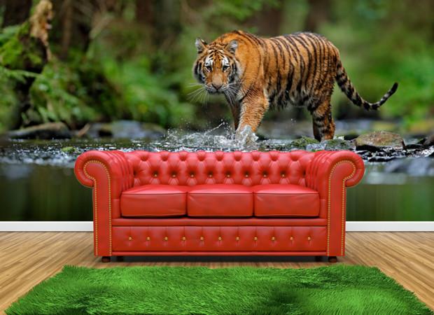 тигр в реке