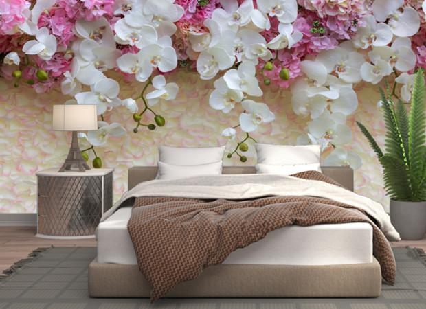 орхидеи на стене