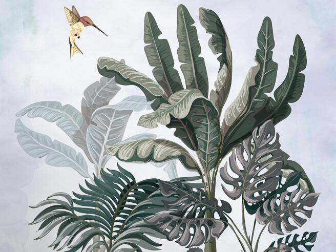 Зебра и колибри возле пальмы