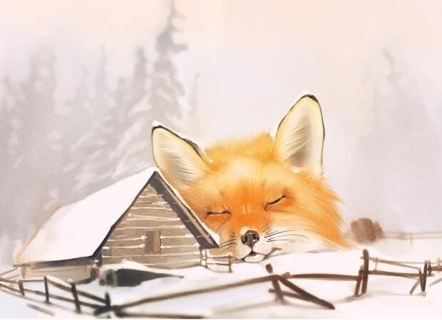 Лис спит на снегу