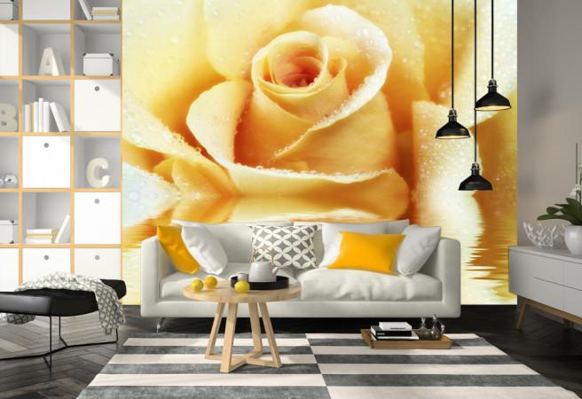 Фотообои чайное цветение