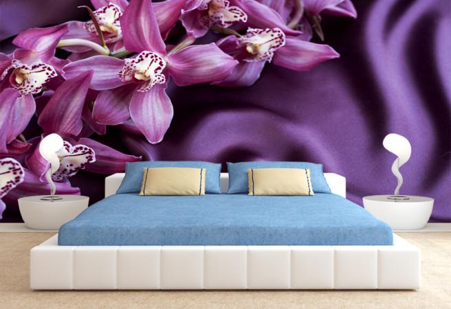 Фотообои прекрасные орхидеи