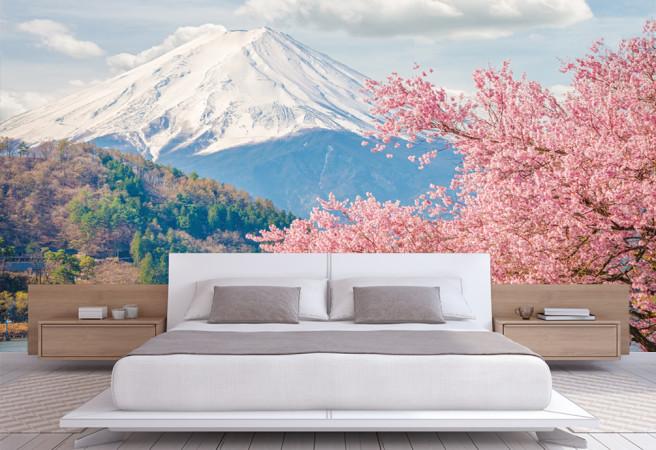 сакура в горах