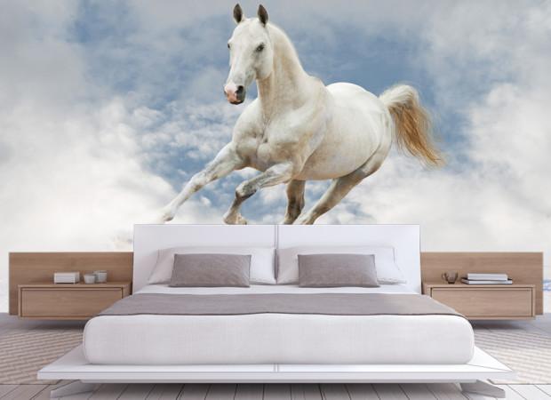 облачная лошадь