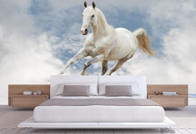 Фотообои облачная лошадь
