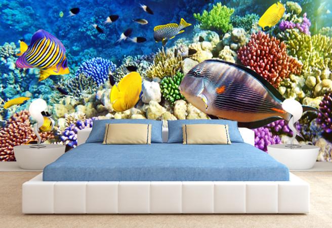 Фотообои рыбки и кораллы
