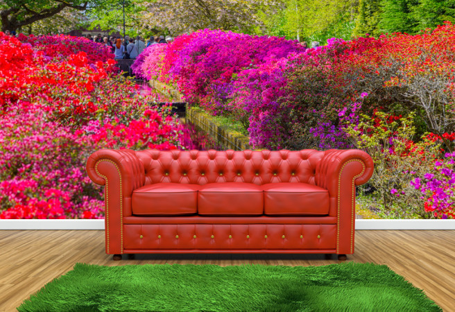 радужный сад