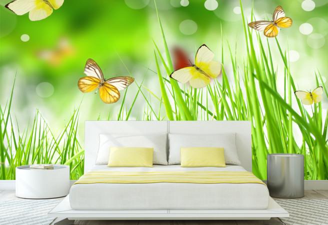 бабочки в траве