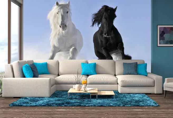 Фотообои Две лошади