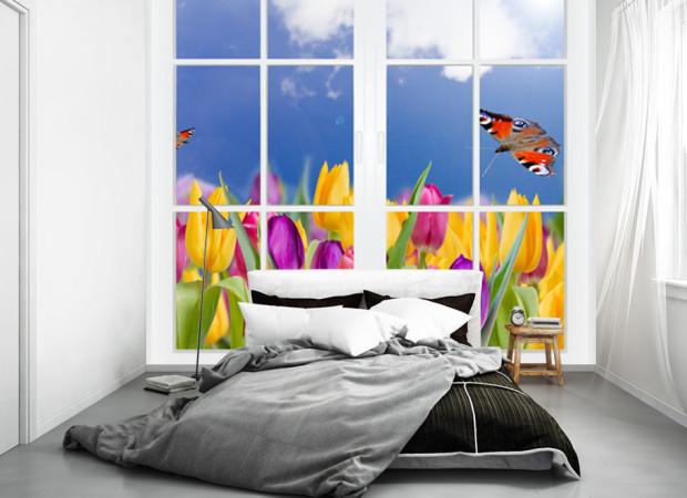 Окно в тюльпаны