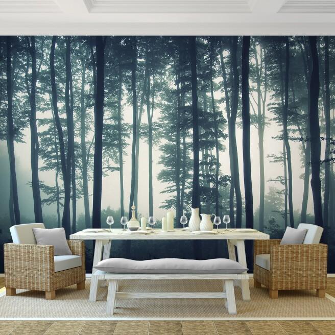Фотообои высокие деревья в тумане