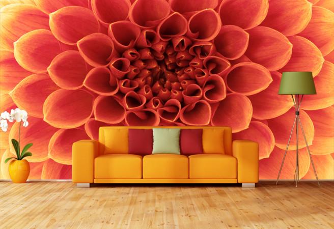 Фотообои Цветы крупным планом
