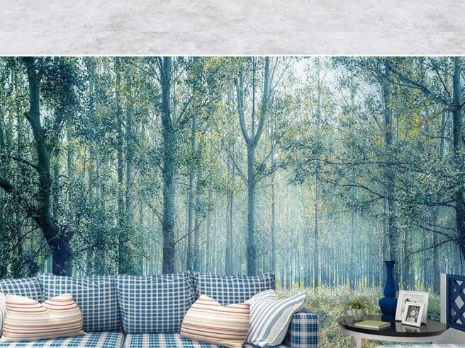 Фотообои Весенний лес