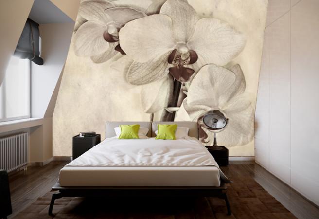 Фотообои Орхидеи в сепии