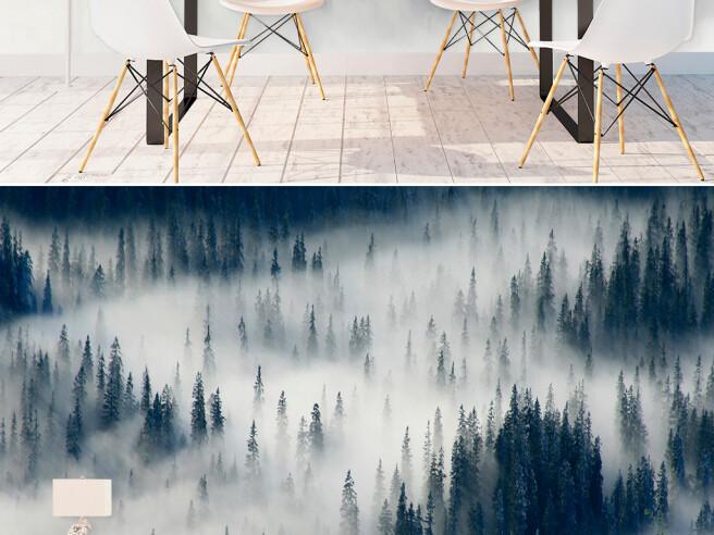 Лес в дымке