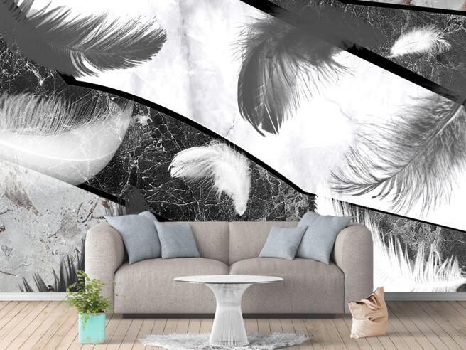 Перья на черно-белом граните