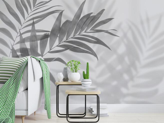 Фотообои Тень от листка  пальмы